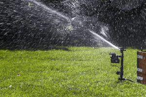 Do Motion Sensor Sprinklers Work –  Orbit Yard Enforcer vs Scarecrow